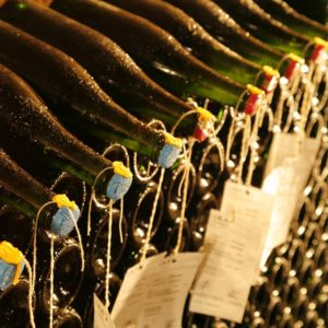 bouteilles_echantillon_champagnejeansandrin